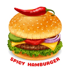 Spicy Hamburger vector image