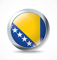 Bosnia and Herzegovina flag button vector image