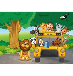 A zoo bus full animals vector