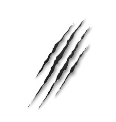 Beast claw marks scratches or wild animal traces vector
