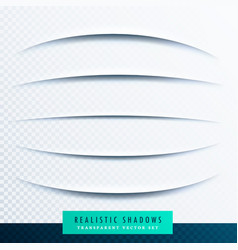 curve paper shadows effect collection vector image
