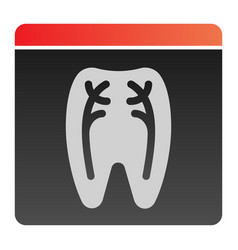 dental xray flat icon tooth xray color icons in vector image