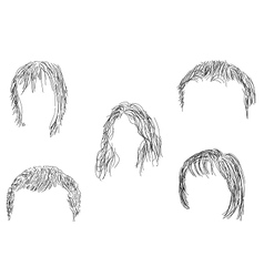 Hair wig vector