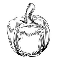 vintage retro woodcut sweet pepper vector image