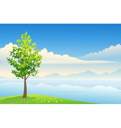 Summer tree background vector image vector image