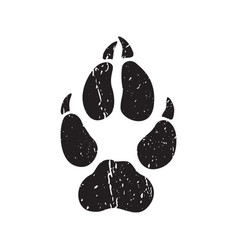 a trace from a wolf white silhouette of foot vector image