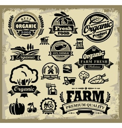 organic harvest labels vector image vector image