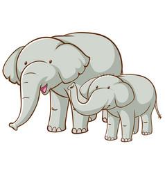big and small elephants cartoon on white vector image