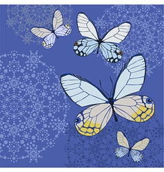 butterflys blue vector image