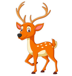 cartoon cute deer on white background vector image