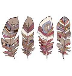 Ethnic Indian feathers plumage background vector image