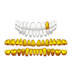Gold tooth metal golden human teeth old vector
