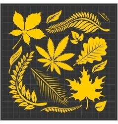 Leaf collection - set vector