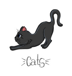 Painted set black cats in different poses vector