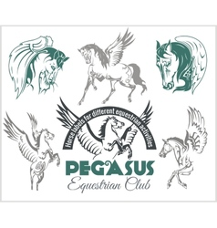 Pegasus and horses vintage labels badges vector image