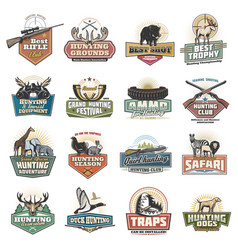 Safari and hunting sport icons equipment vector
