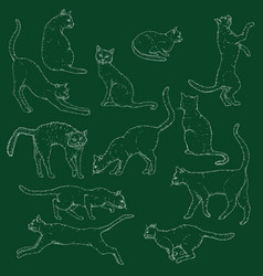 Set chalk sketch cats hand drawn feline poses vector