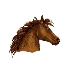 Artistic brown horse head sketch portrait vector image vector image
