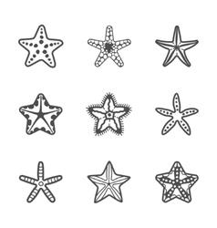 set of various contour sea starfish vector image