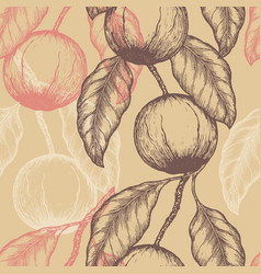 hand drawn brazil nuts seamless pattern branch of vector image vector image
