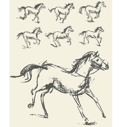 Horse set hand-drawn phase of the movement vector