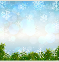 christmas snow background with fir twigs vector image