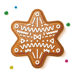 gingerbread star isolated on white christmas vector image