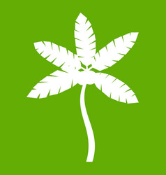 palm tree with coconuts icon green vector image