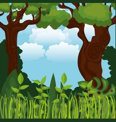 Rainforest jungle natural scene vector