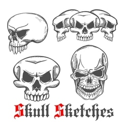 Human skulls and monster cranium sketches vector image vector image