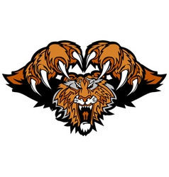 Tiger mascot pouncing graphic vector
