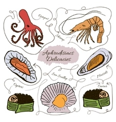 Hand drawn collection of seafood vector