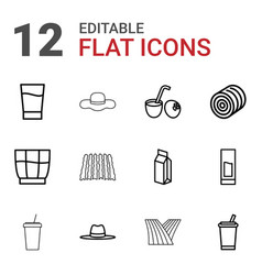 12 straw icons vector
