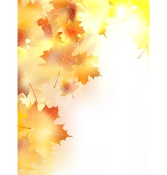 Autumn background with leaves plus EPS10 vector
