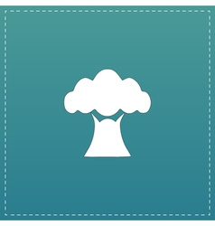 Baobab tree icon vector