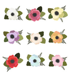 Colorful anemone flower bouquet collection flat vector