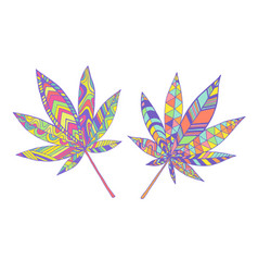 colorful summer psychedelic leaves marijuana neon vector image