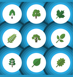 flat icon bio set of linden oaken leaves and vector image