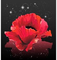 Flower in space vector