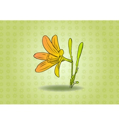 flower on the green background vector image
