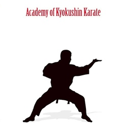 Silhouette of the man of engaged karate on a white vector image