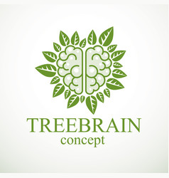 Tree brain concept wisdom nature vector