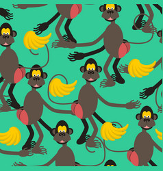 hamadryad seamless pattern monkey red butt and vector image vector image