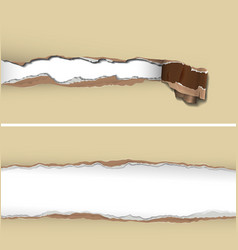 Torn paper background vector image