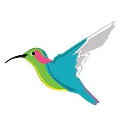 Small exotic hummingbird vector image