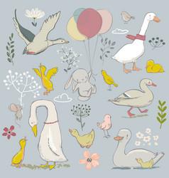 cute farm birds set vector image