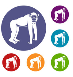 Chimpanzee icons set vector