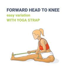 Forward head to knee or janu sirsasana easy vector