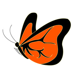 orange butterfly on white background vector image