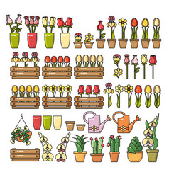 set of colorful flower icon isolated o vector image
